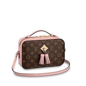 Saintonge Louis Vuitton bag in Rose Poudre